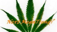 Cannabis: Infancy of the Future Mega Trend. Part 2